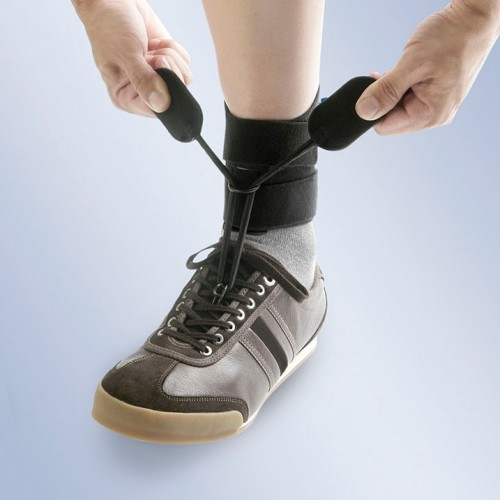Anti equino calzado cordones Boxia AB01